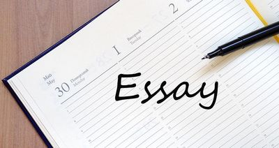 Get your paper written by a professional essay writing service papers-stock.com how it